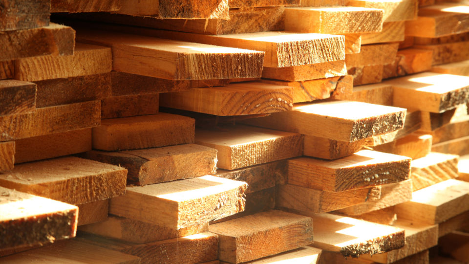 timber group google ads increased sales oyster studios hero
